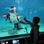 Adventure Aquarium Scuba Santa