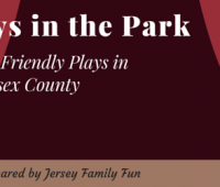 Plays in the Park