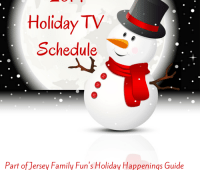 Family Holiday TV Shows (1)