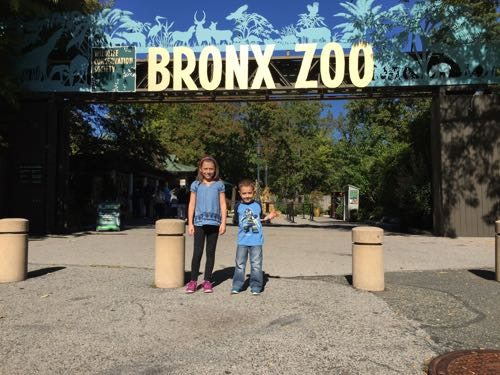 Bronx Zoo has suggested admission days! Count this as one of your free places to go in NYC