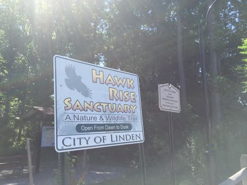 Entrance to Hawk Rise Sanctuary