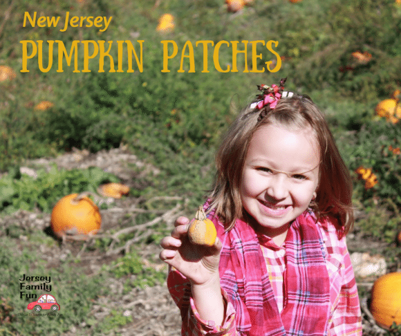 new-jersey-pumpkin-patches-for-facebook