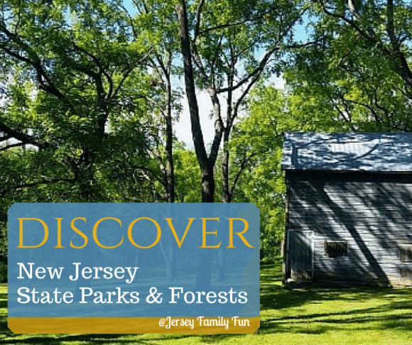 New Jersey State Parks & Forests