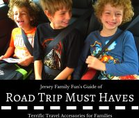 Road Trip Must Haves best travel accessories (1)
