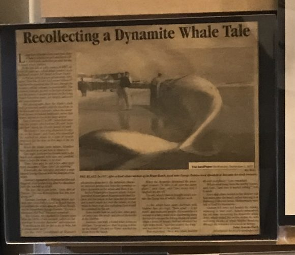 1957 Whale explosion exhibit at the New Jersey Maritime Museum in Beach Haven New Jersey.