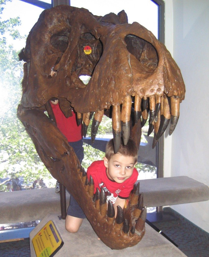 N in Dinosaur mouth at Academy of Natural Sciences Photo credit Jersey Family Fun