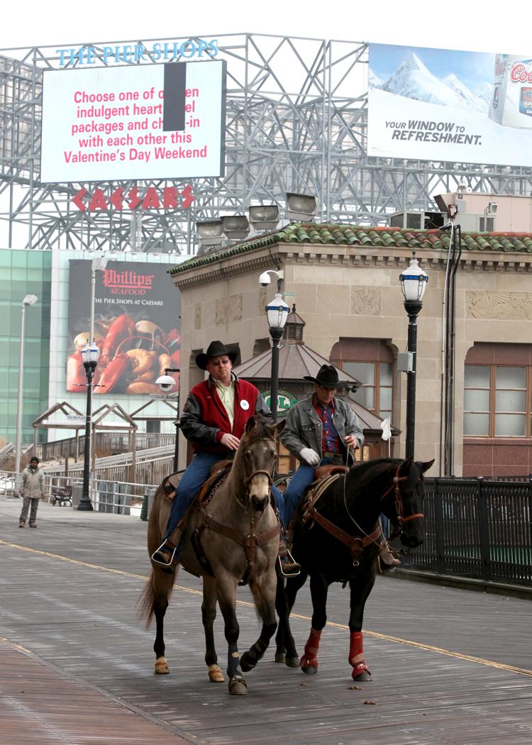 Atlantic City Rodeo horses