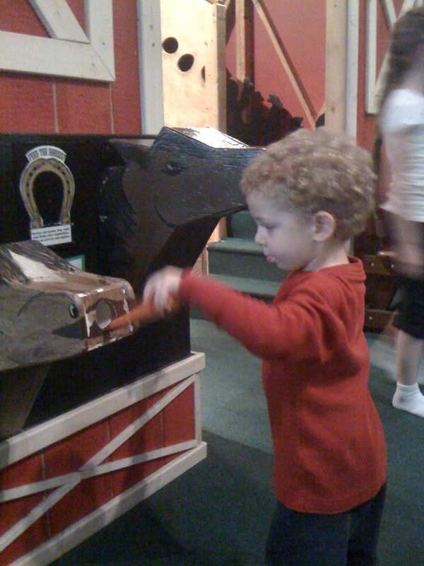 feeding horses at Garden State Discovery Museum in Cherry Hill New Jersey
