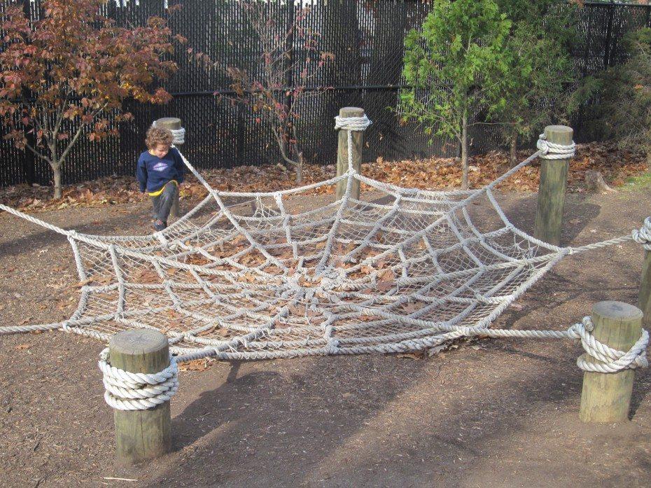 spiderweb at Turtle Back Zoo in West Orange NJ