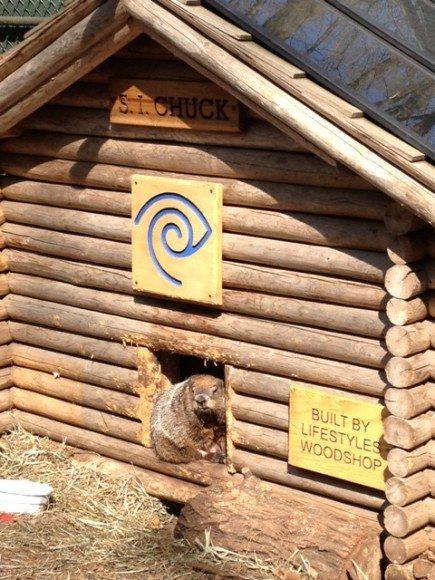 Staten Island Zoo 1