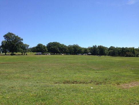 One of many open fields
