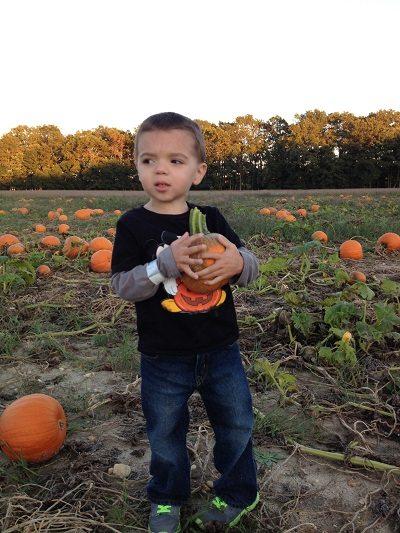 Sahl's Father Son Farm Pumpkin Patch