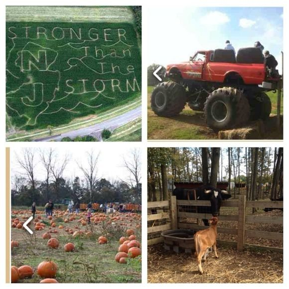 Ort Farms offers a large variety of free and low-cost events!