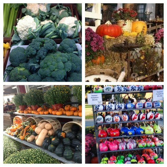 Ort Farms has 2 farm stands that offer amazing produce and yummy homemade treats!