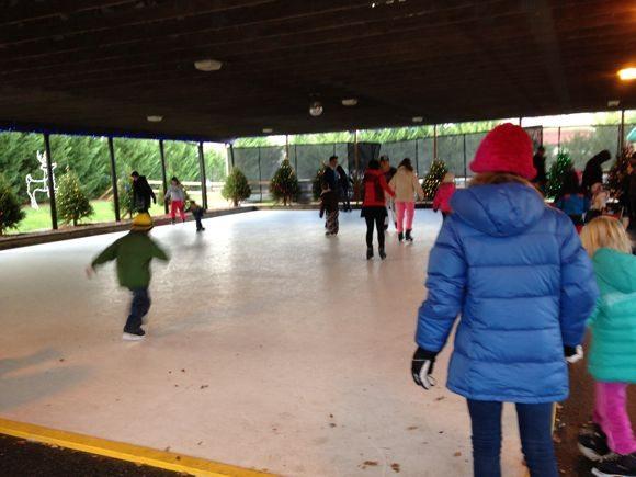 ice skating at Hersheypark's Rudolph's Skating Pond