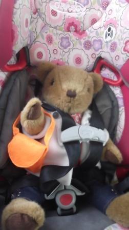 Zylie the Bear Car Seat