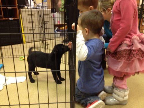 Monmouth County SPCA Adoption Center