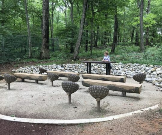 boy pretends to lead a class at an outdoor classroom with log benches and acorn seats at the Trailside Nature and Science Center