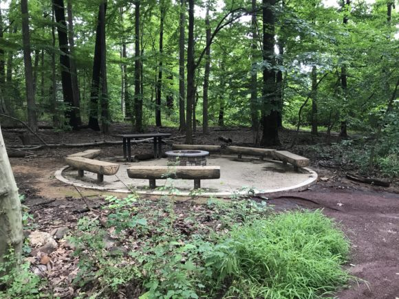 A campfire circle complete with benches that surround a campfire ring outside of Trailside Nature Center.