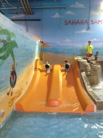 Double Slide in Lizard Lagoon