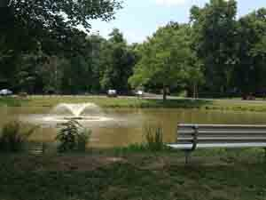 Sit by this peaceful pond on a nice day or in the winter when conditions are right bring your ice skates!