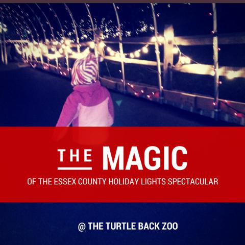 Essex County Turtleback Zoo Holiday Lights Spectacular