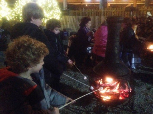 Blue Cross RiverRink Winterfest roast