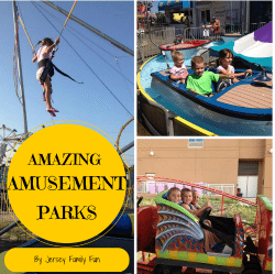 amazing amusement parks 2