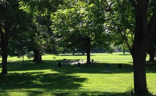 thompson park picnic