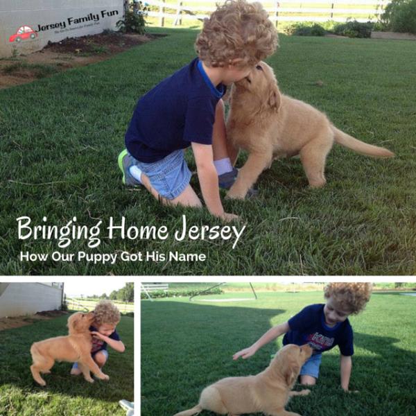 Bringing Home Jersey (1)