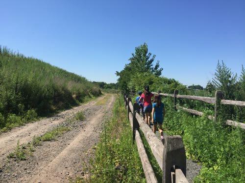 Hawk Rise trail