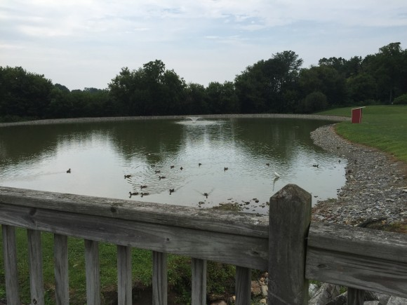 The view of the Hershey Farms Inn pond from the wooden bridge.