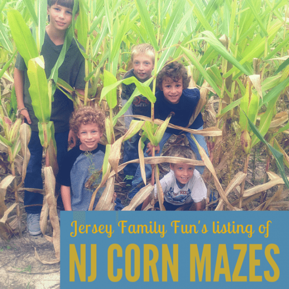 New Jersey Corn Mazes