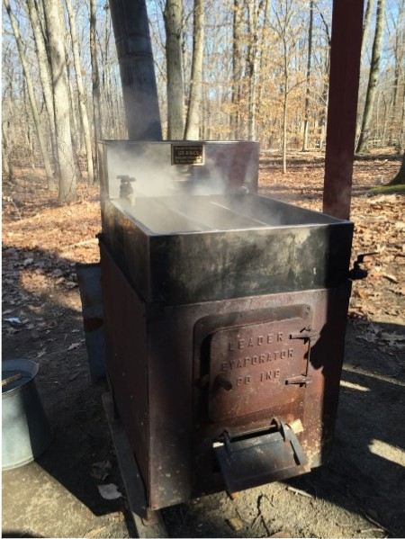 The evaporator that boils the sap down to syrup.