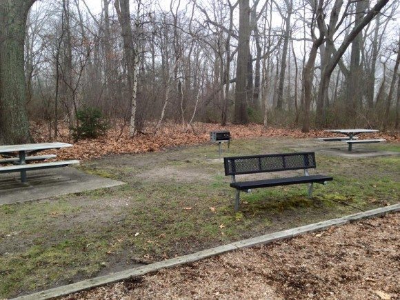 hockhockson benches