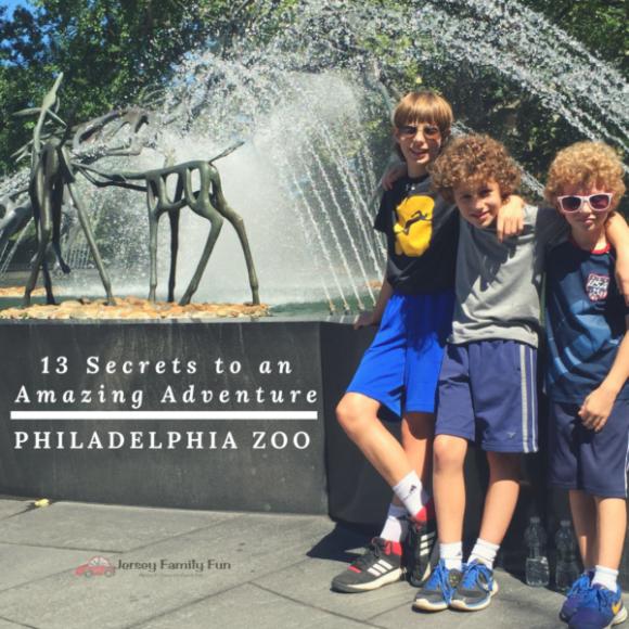 Secrets to an Amazing Adventure Philadelphia Zoo