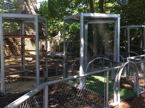 Philadelphia Zoo Meerkat