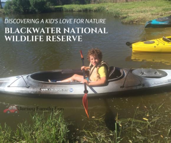 Blackwater National Wildlife Reserve