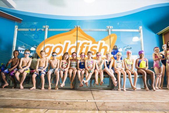 Goldfish swim school 1