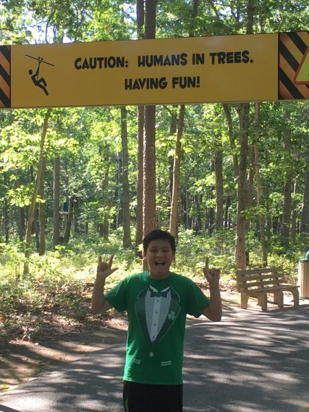 Tree to Tree Cape May