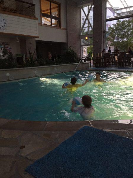 Hyatt Regency Chesapeake Bay indoor pool