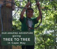 Tree to Tree Adventure Park in Cape May