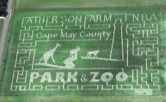 Sahls Father Son Farm