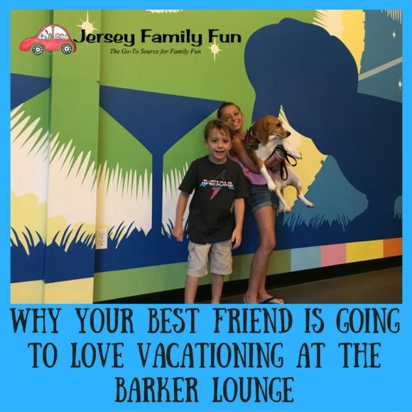 why-your-best-friend-is-going-to-love-the-barker-lounge