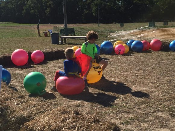 Sahl's Father Son Farm bouncing ball pit