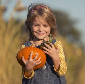 Johnson's Locust Hall Farm offers a pumpkin patch in South Jersey