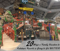 family vacation to Kalahari Resorts