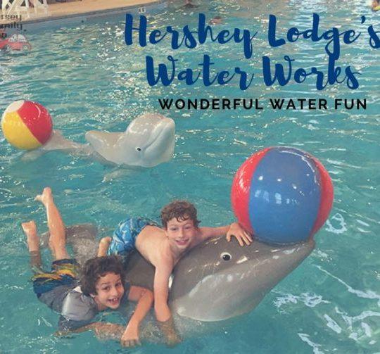 Hershey Lodge Water Works