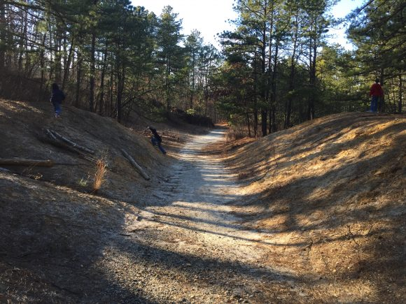 Exploring the trails of the Shark River Park, part of the Monmouth County Park System.