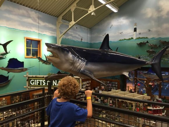 https://www.jerseyfamilyfun.com/event/gone-fishing-bass-pro-shop/all/